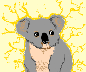 an eletrified koala
