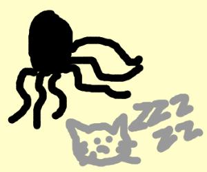 6-legged octopus attacks sleeping cat