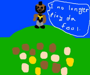 Mr.T does not pity the fools