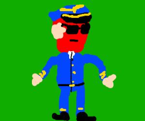 Fruit-ish Airways Pilot