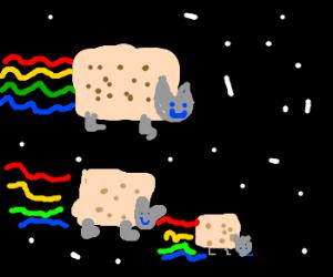 Nyan kittens