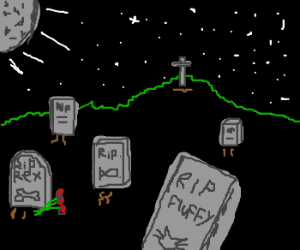 Pet cemetery at night