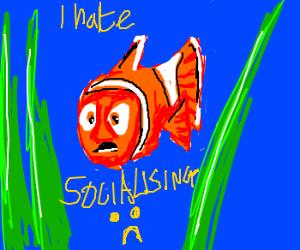 Socially awkward fish
