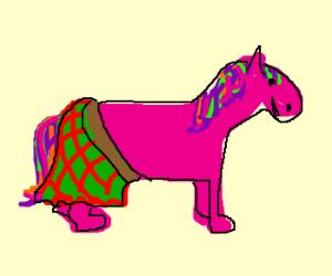 My scottish little pony