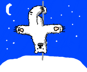 polar bear is pole dancing