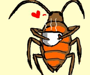 a roach loves it's coffee