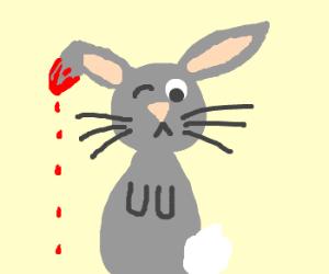 bleeding bunny winks at you