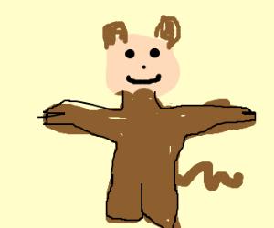 man turned monkey