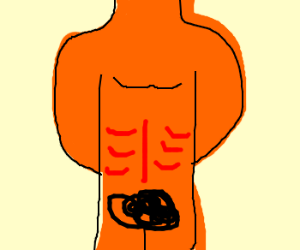 Orange body with red abds. Hairy pubis