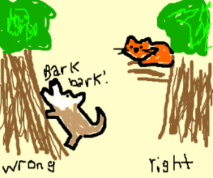 Image result for dog barking up the wrong tree