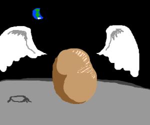 Angel potato is the moon.