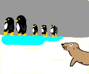 Family of penguins on ice, seal watches