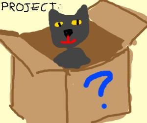 Schrödinger's cat project