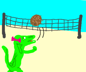 Girly 'gator playing vball with coconut