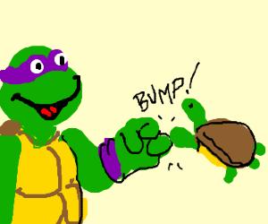 """Donatello bro fists his home """"turtle?"""""""