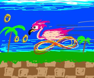 World's Fastest Flamingo.