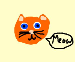 Totes Adorbs Cat