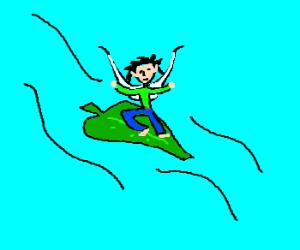 Wood fairy likes to leaf surf