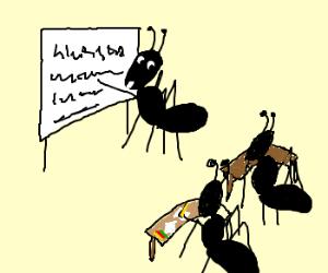 ant teacher teaches her students