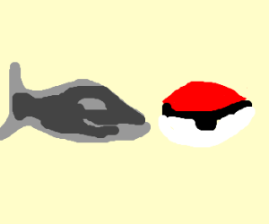 Looking at Pokeballs give whale headache