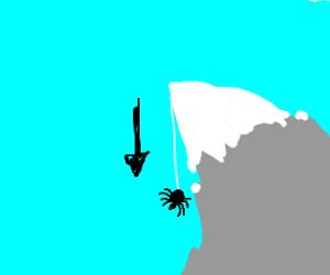 Spider descends mountain