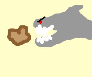 Angry shark eats toast.