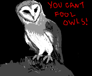 You cant fool owls!