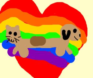 cat dog rainbow heart