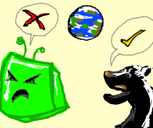 Alien cube & skunk disagree about Earth