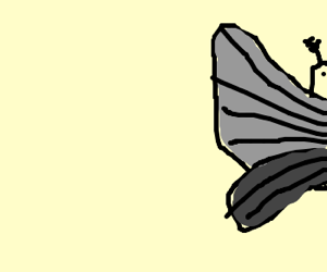 A mothwing