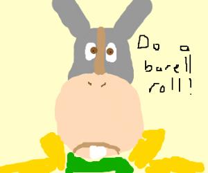 do a barrel roll 2x