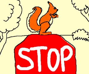 squirrel on the stop signal
