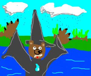 Bear, wizard of water.