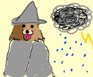 Pedo-Wizard has Rain Power