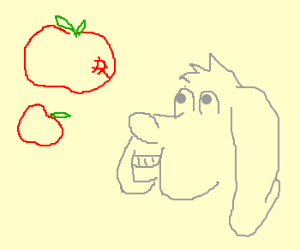 Derpy dog likes apples