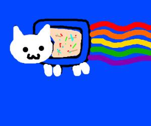poptart kitty poops a rainbow.
