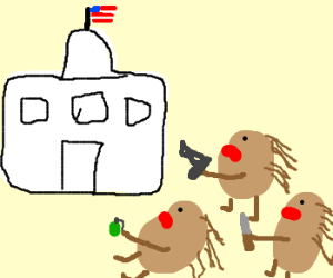 Porcupines take over America