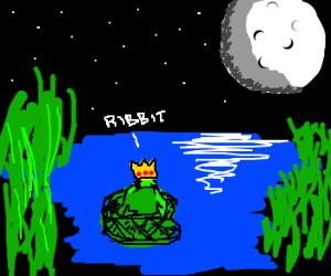 King frog sits in moonlight