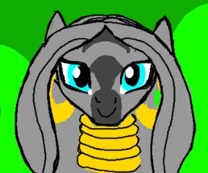 Weird guy wants you to draw a zebra