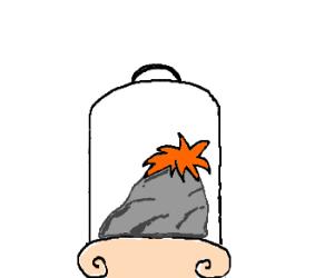 Ginger Rock