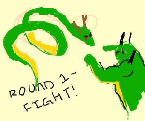 Shenron vs. Porunga
