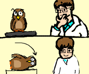 Rotate your owl for science