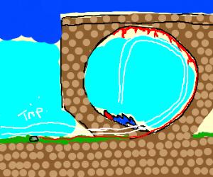 Sonic trips