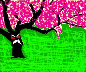 Sakura staring at me frighteningly