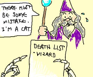 Wizard tells Death he is a cat