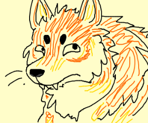 An Orange Wolf Drawing By Appollo199201