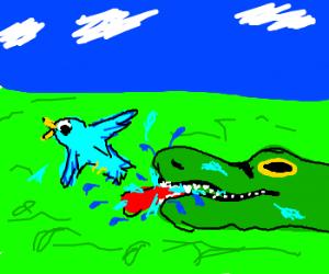 Alligator hates birds