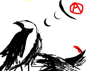 bird contemplates freedom
