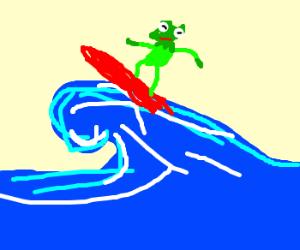 Surfing Kermit is rad, dude!