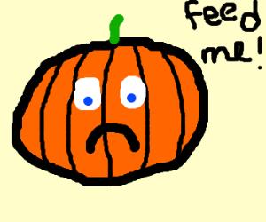 Hungry sad pumpkin